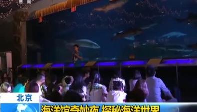 北京:海洋館奇妙夜 探秘海洋世界