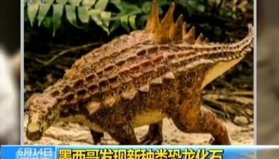 墨西哥發現新種類恐龍化石