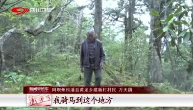 阿壩州松潘縣:發現野生大熊貓