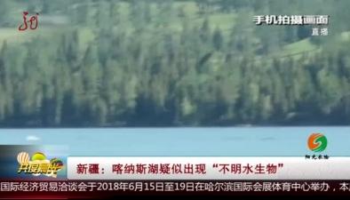 """新疆:喀納斯湖疑似出現""""不明水生物"""""""