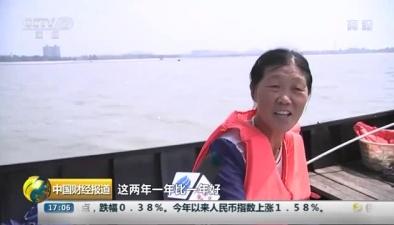 安徽巢湖迎蝦汛 水清蝦肥漁民樂