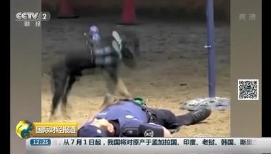 警察假裝昏迷 警犬緊急施救