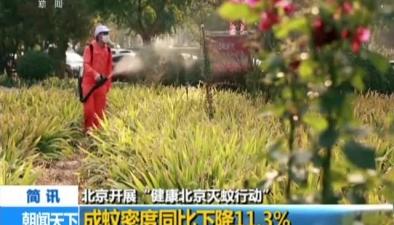 """北京開展""""健康北京滅蚊行動"""":成蚊密度同比下降11.3%"""