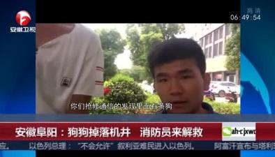 安徽阜陽:狗狗掉落機井 消防員來解救