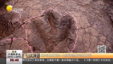侏羅紀世界再現! 山東發現恐龍足跡化石群