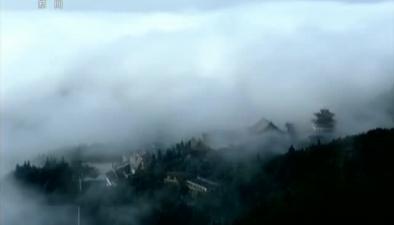 湖南張家界:天門山出現雲海雲瀑景觀