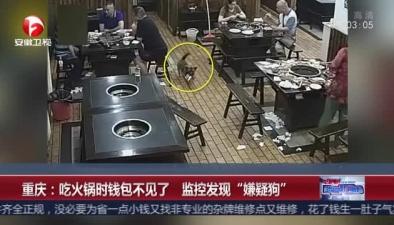 """重慶:吃火鍋時錢包不見了 監控發現""""嫌疑狗"""""""