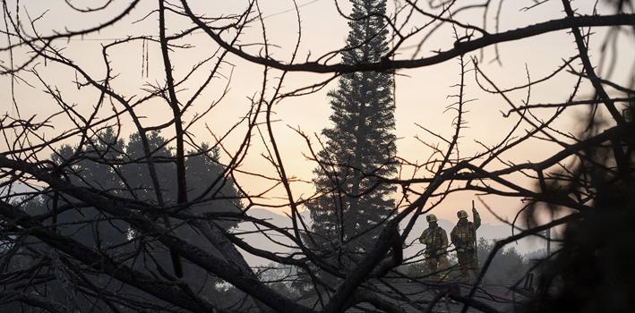 美國加州聖巴巴拉縣山火蔓延迅速