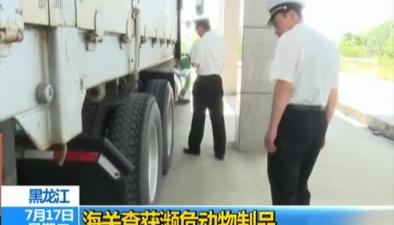 黑龍江:海關查獲瀕危動物制品