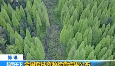 全國森林資源檢查結果公布
