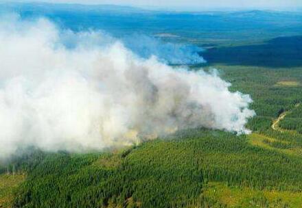 瑞典:森林大火持續蔓延 多地民眾撤離