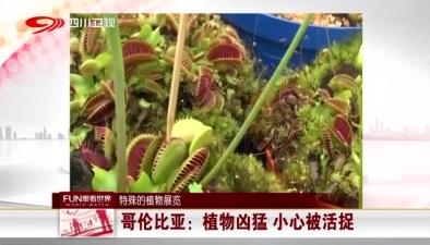特殊的植物展覽:植物兇猛 小心被活捉