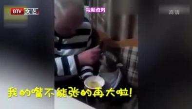 """爺爺 把貓寵成""""親孫子"""""""