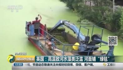 """英國:高溫致河水藻類泛濫 河面鋪""""綠毯"""""""