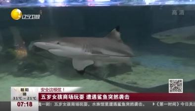 五歲女孩商場玩耍 遭遇鯊魚突然襲擊