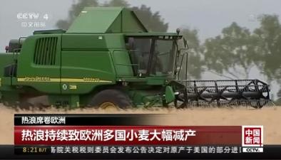 熱浪席卷歐洲:熱浪持續致歐洲多國小麥大幅減産