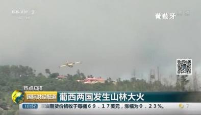 葡西兩國發生山林大火