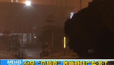 """臺風""""貝碧嘉""""昨晚登陸廣東湛江"""