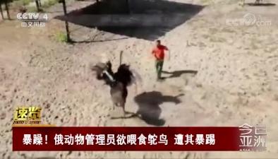 暴躁!俄動物管理員欲喂食鴕鳥 遭其暴踢
