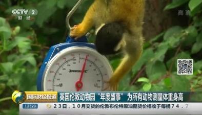 """英國倫敦動物園""""年度盛事"""" 為所有動物測量體重身高"""