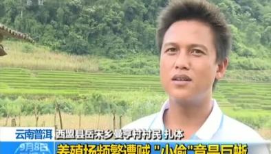 """雲南普洱:養殖場頻繁遭賊 """"小偷""""竟是巨蜥"""