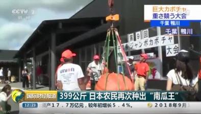 """399公斤 日本農民再次種出""""南瓜王"""""""