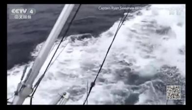 一群虎鯨跟隨漁船嬉戲玩耍