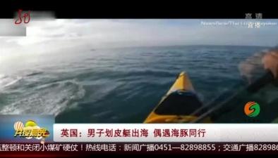 英國:男子劃皮艇出海 偶遇海豚同行