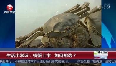 生活小常識:螃蟹上市 如何挑選?