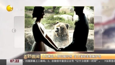 大灰熊亂入情侶婚紗照 實力演繹羨慕嫉妒恨