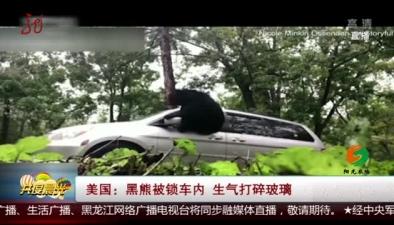 美國:黑熊被鎖車內 生氣打碎玻璃