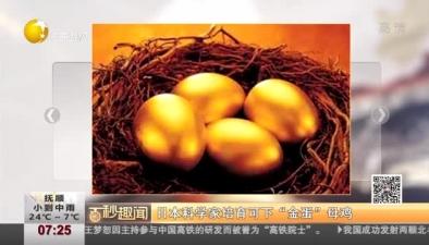 """日本科學家培育可下""""金蛋""""母雞"""