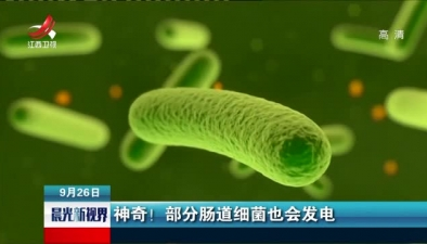神奇!部分腸道細菌也會發電
