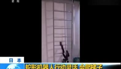 日本:蛇形機器人行動靈活 會爬梯子
