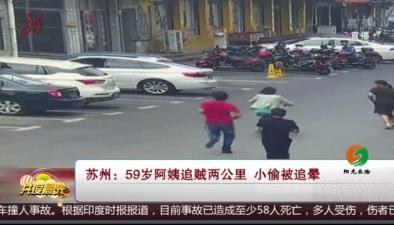 蘇州:59歲阿姨追賊兩公裏 小偷被追暈