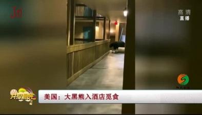 美國:大黑熊入酒店覓食