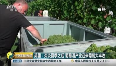 英國:炎炎夏季之後 葡萄酒産業迎來葡萄大豐收