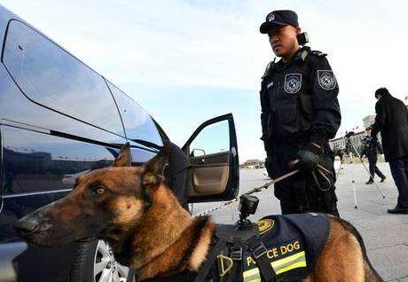 美國:警犬佩戴攝像頭執勤