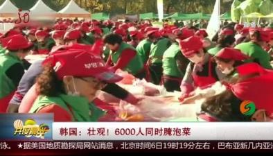 韓國:壯觀!6000人同時腌泡菜
