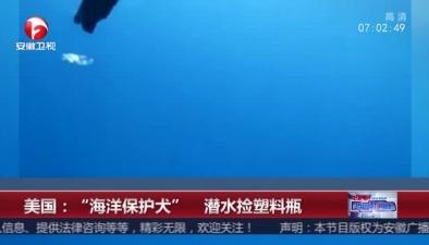 """美國:""""海洋保護犬"""" 潛水撿塑料瓶"""
