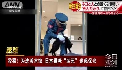 """狡猾!為進美術館 日本貓咪""""裝死""""迷惑保安"""