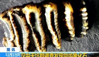 漢中天坑群調查發現劍齒象化石