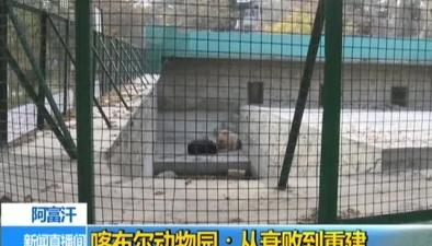 阿富汗:喀布爾動物園 從衰敗到重建
