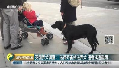 英國養犬調查:法律齊備依法養犬 違者或遭重罰
