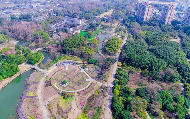 """【飛""""閱""""中國】鳥瞰上海植物園""""春""""色"""
