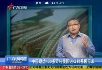 中國退運美國100多萬噸轉基因玉米