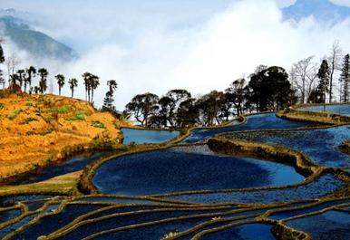 """丽江市和澄江县亮相""""聚焦中国""""最美外景地"""