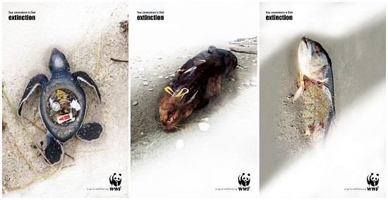 那些被垃圾戕害的海洋动物