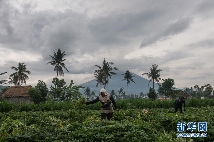 (國際)(5)巴厘島火山持續噴發