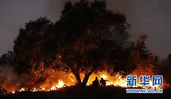"""【转载】""""托马斯山火""""成为加州历史上最大山火 - zhangfangkuai - 张方块的博客"""
